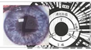 虹彩学コース/診断学として目の反射区を学ぶ