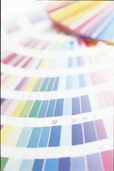 今、注目の色彩心理研究コース