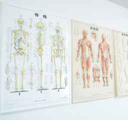 アイムアカデミー&nbsp【大阪本校】リンパ、整体、マッサージ専門校