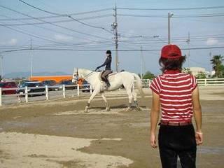 乗馬トライ会員コース