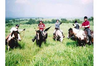 馬の学校6ヶ月コース