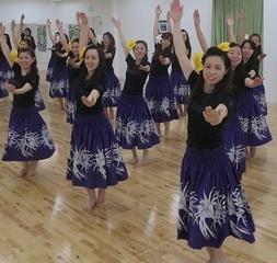 あなたも始めようフラ!名古屋市栄フラダンス スタジオ オープン! 初心者歓迎!