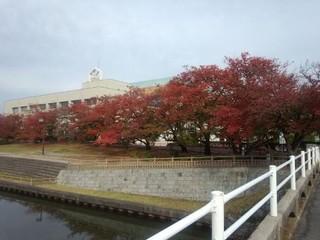 スタジオ エム&nbsp弥富総合社会教育センター教室