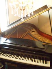 クラシックピアノ〜音楽科受験コース〜