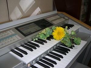 18歳~シニアの方対象♪【大人コース】ピアノ・エレクトーン★45分プライベートレッスン@名古屋緑区♪