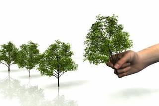 森づくりアドバイザー資格認定講座 無料説明会 【東京・銀座教室】