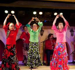 和田裕子フラメンコ舞踊基礎クラス&nbsp【フラメンコ教室 新宿区】
