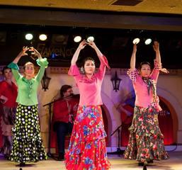 和田裕子フラメンコ舞踊基礎クラス&nbsp【フラメンコ教室 横浜市】