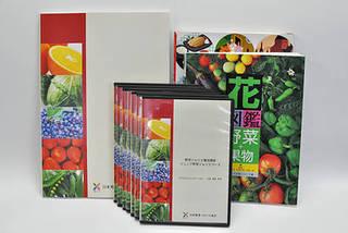 ジュニア野菜ソムリエコース全通信制【DVD学習】