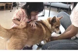 動物と一緒に活動できる!アニマルセラピー的かかわり講座
