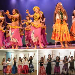 NOAダンス教室 新宿校 回数コース ベリーダンス、フラ、タヒチアン