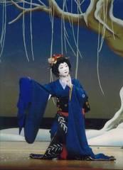 初めての日本舞踊〜着付けレッスンから初めての日舞まで〜