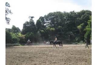 【体験乗馬】 45分指導付き。