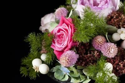 MISUMI Flower Studio