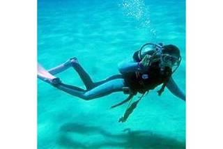 きれいな海でダイビングを学ぶ!OWライセンス取得コース