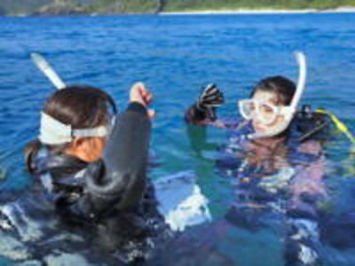潜水本舗 海族