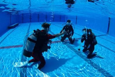 ダイビングスクール マレア