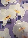 【長津田校】押し花の魅力