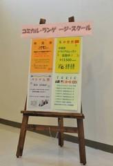 【英検合格!】★1級合格を目指すマンツーマンレッスン★