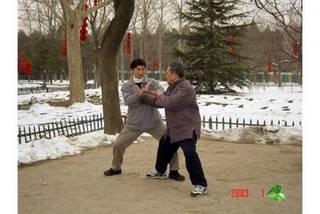 中国秘伝の気功・太極拳(陳式心意混元太極拳)