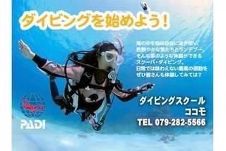 店内温水ダイビングプールで体験〜国際ライセンス取得。