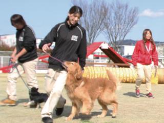 特殊犬訓練スペシャル体験