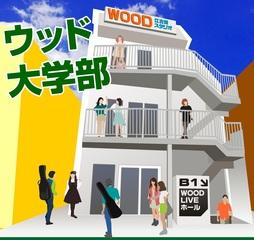 東京の音楽専門学校。大学卒業資格が取れる『ウッド大学部』は(WO...