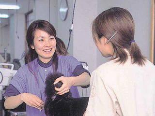 トリマーコース【専修科】2年制(ナンバペット美容学院 【なんば校】)