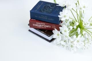 ◆占い師短期養成コース 【遠方の方・忙しい方向け】 短期間で占い師の資格がとれる!