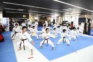 yuya's karate field