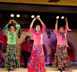 和田裕子フラメンコ舞踊基礎クラス【フラメンコ教室 横浜市】