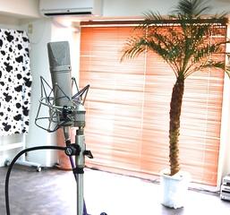 Studio Vibes 【スタジオバイブス】
