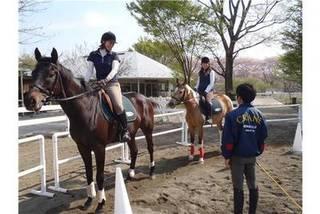 乗馬クラブクレイン伊奈埼玉県の乗馬クラブ