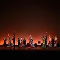 Studio World(スタジオワールド)フラメンコダンス教室