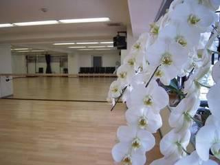 サザンフォレストダンススタジオ南森町駅前