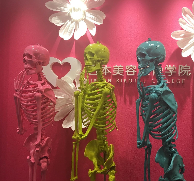 日本美容整骨学院